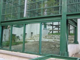 高雄市壽山動物園猴園